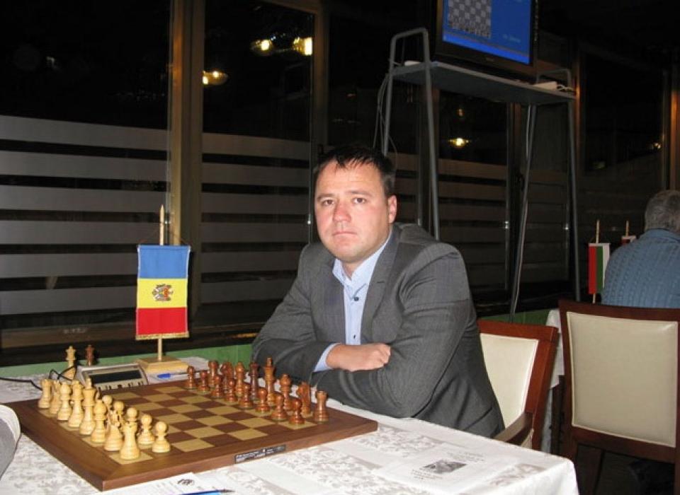 Svetushkin photo (16)